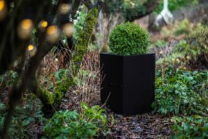 Garden Trends for 2018