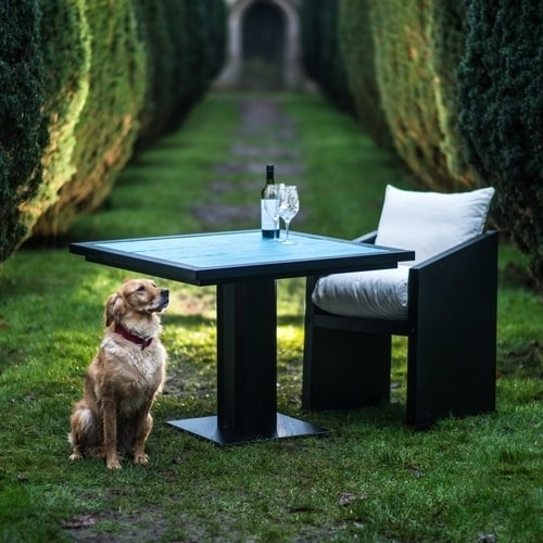 Ironfire Bistro Table with Dog