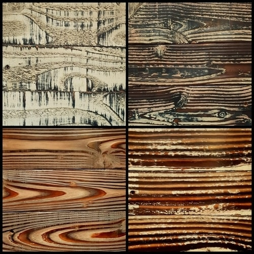 4 Natural sustainable wood samples